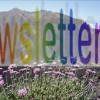 Neu: Abonnieren Sie den Newsletter von La Palma 24
