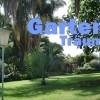 La Palma Pflanzen: Katyflor