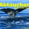 Plastik im Meer – Gefahr für Wale und Delfine