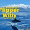 WhaleWatching auf La Palma & WDC-Infos