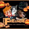 La Palma Comic: Tschörnie – Fritz – Erdmann an Halloween