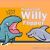 Wale und Delfine: aktuelle Infos und Entwicklungen