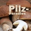 Pilze auf La Palma: Rose Marie Dähncke und ihre Errungenschaften