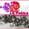 Flamenco entre Amigos: unterwegs für die Isla Bonita