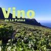 La Palma Wein Jahrgang 2017: gute Aussichten