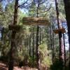 La Palma – Acropark: Erste Waldseil-Anlage der Insel eröffnet