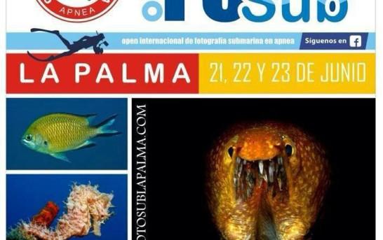 """La Palma: 1. Internationaler Unterwasserfoto-Wettbewerb """"CazaFotoSub"""""""