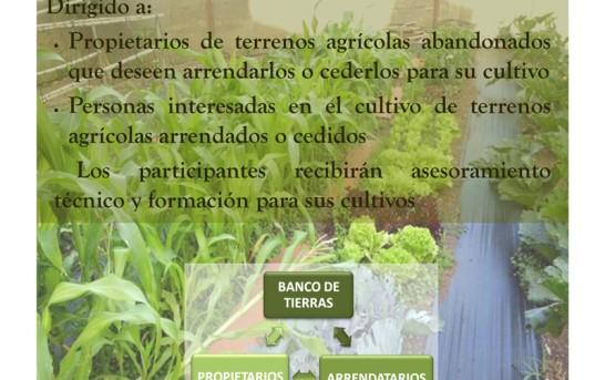 Banco de tierras La Palma – Boden-Bank schafft Arbeit