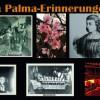 """""""Palmeros en el Mundo"""" treffen sich im World-Wide-Web"""