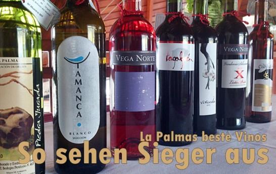 Newsticker: La Palma Nachrichten am 16.6.2014