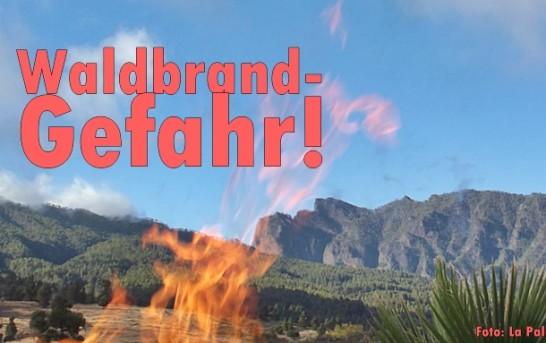 Waldbrände auf La Palma: Interview mit Umwelträtin Nieves Rosa Arroyo