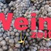 La Palma: Nachrichten rund um den Vino de La Palma