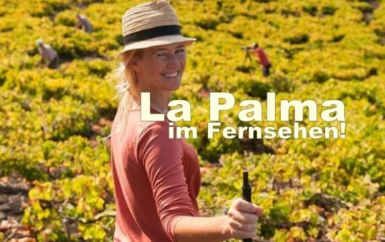Newsticker: La Palma Nachrichten am 15.12.2014