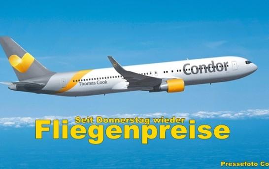 Newsticker: La Palma Nachrichten am 4.12.2014