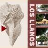 Los Llanos: Ein Foto-Spaziergang