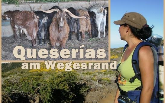 Käse aus La Palma & Wandern