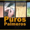 La Palma Zigarren: Puros Artesanos Julio