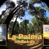 La Palma & Kanaren Bücher: ein neues und ein bewährtes