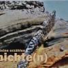 Bücher: Geologischer Wanderführer La Palma
