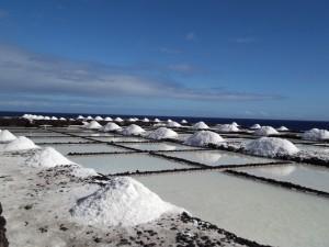 Frisch auf den Tisch: Salz aus Fuencaliente. Foto: La Palma 24