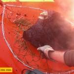 El-Discreto-Eruption 2011: Lavabrocken aus dem Meer. Foto: IGN