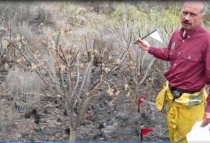 Nach dem Brand: Francisco erforscht die Ursache. Foto: Medio Ambiente