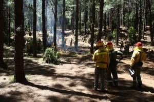 Die Umweltengel von La Palma: Brandvorbeugung und Einsatz bei Feuern gehört zu ihrem Job. Foto: Medio Ambiente