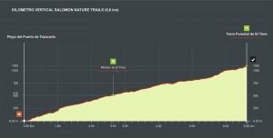 1. TransVulcania-Vertical-Lauf: so sieht die Strecke aus. Grafik: www.transvulcania.com