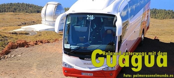 Gua-Gua-2012-PalmerosEnElMundo2-Titel