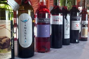 Gold- und Silbermedaillen-Gewinner: Wettbewerb in Garafía ermittelt jedes Jahr die besten Weine von La Palma.