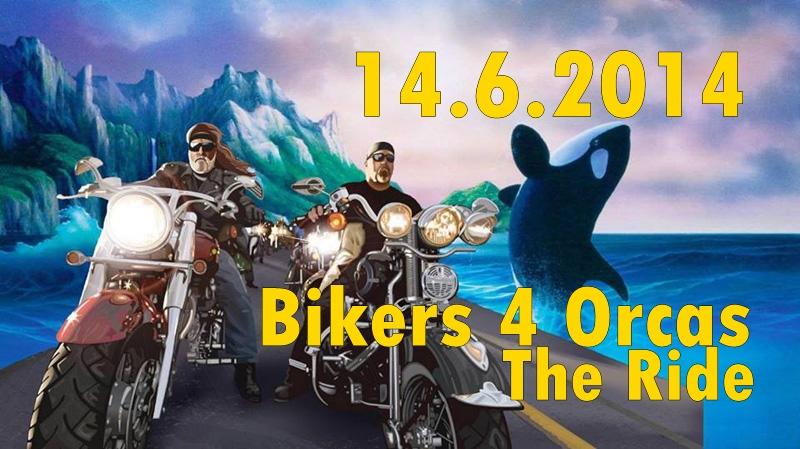 La-Palma-Bikers-4-Orcas-Titel-Richtig