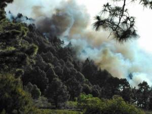Brand in El Paso: war zum Glück schnell unter Kontrolle. Foto: BRIF/Aviles