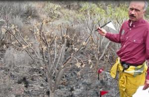 Francisco vom Medio Ambiente in El Paso: Auf der Spur der Brandursache und des Brandherdes. Foto: Medio Ambiente