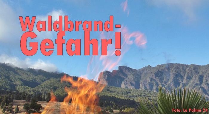 Waldbrand-Titel-LP24
