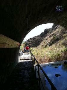 Manchmal eine Pfütze, manchmal ein reißender Fluss: Hier steht das Wasser im Barranco des Archäologieparks Belmaco nicht hoch. Foto: La Palma 24