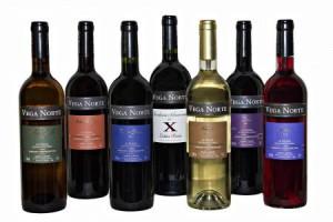 Vega Norte: Meistprämierte Weine der Insel. Foto: Kellerei