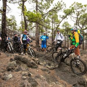 MTB auf La Palma: Foto: Kirsten Sörries