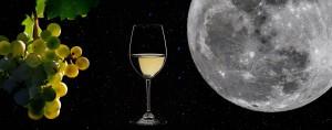 Vino & Mond: nächste Führung in der Bodega Teneguía