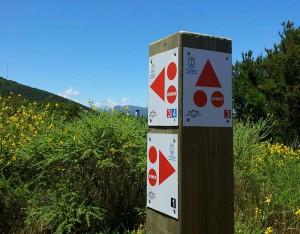 Zeichen an den MTB-Routen: Die Farbe signalisiert den Schwierigkeitsgrad, Pfeile geben die Richtung an. Foto: Cabildo