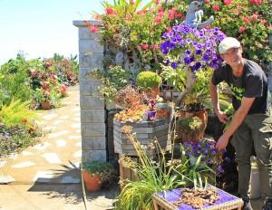 Heiko Bartsch: züchtet in seinem Garten in Mazo viele Stecklinge selbst, die in den Balkonen in Santa Cruz erblühen. Foto: La Palma 24