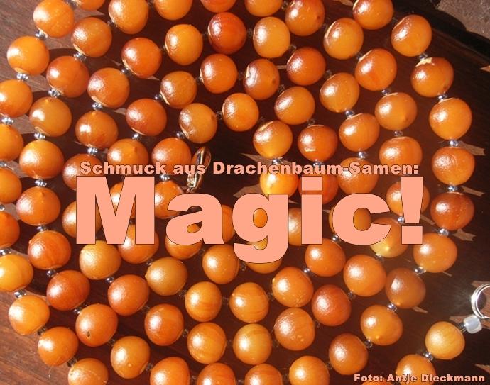 Drago-Perlen-Antje-Foto-Titel