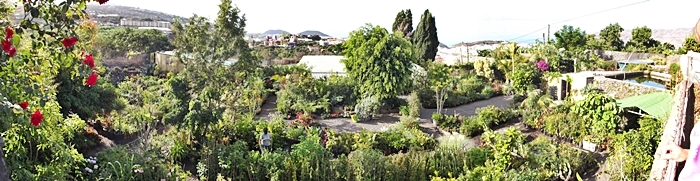 Katyflor-Gelände bei Los Llanos: Tolle Auswahl für Gartenfreunde. Foto: La Palma 24