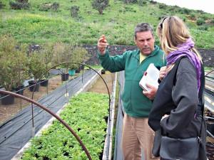 Vivero Puntallan: fachkundige Gärtner beraten die Kunden. Foto: La Palma 24