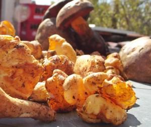 Pfifferlinge und Steinpilze: Dieser Herbst machte die Pilzsammler auf La Palma glücklich. Foto: La Palma 24