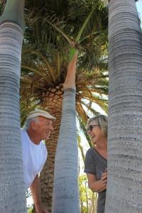 Sylvia und Harald: Künstlerehepaar mit Schaffensdrang und viel Sinn für Humor. Foto: La Palma 24