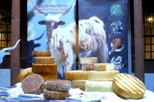 Queso fresco - Queso tierno - Queso semi-curado - Queso curado: Den Ziegenkäse mit Kontrollsiegel gibt es in verschiedenen Reifegraden und Geschmacksrichtungen. Foto: Consejo Regulador DOQP
