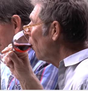 La Palma WeinClub: Die nächste Degustation findet am 27. Mai 2016 statt - unbedingt voranmelden! Foto aus Weinclub-Video