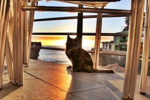 sunset-puerto-naos-katze