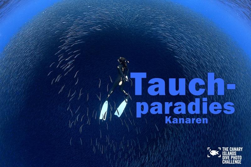 francis-perez-winner-dive-photo-challenge-buceando-titel