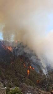 Waldbrand auf La Palma: Auf dem Gemeindegebiet von El Paso oberhalb des Fleckens Jedey brennt die Cumbre. Foto: BRIF